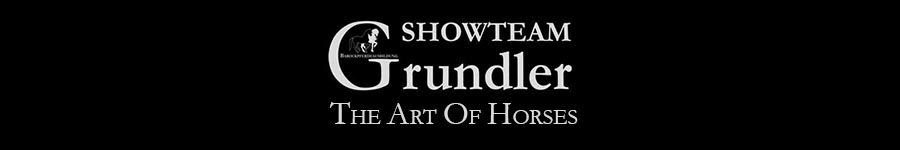 www.showteam-grundler.de